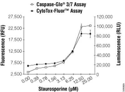 CytoTox-Fluor™ Assay multiplexed with Caspase-Glo® 3/7 Assay.