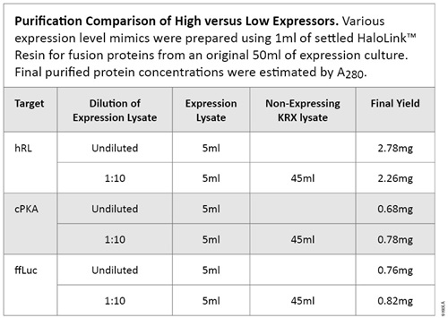 Purification Comparison of High Versus Low Expressors.