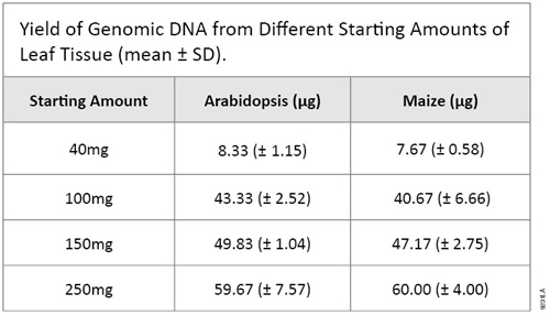 Yield of Genomic DNA from different Starting Amounts of Leaf Tissue
